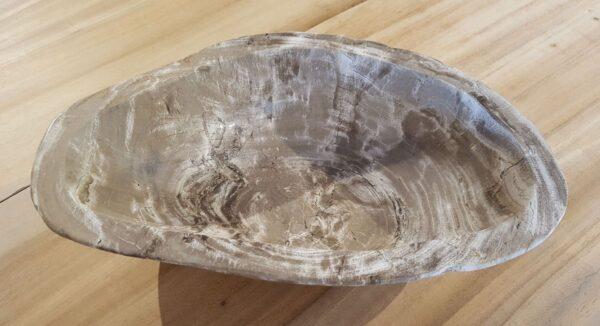 Ciotola legno pietrificato 30034