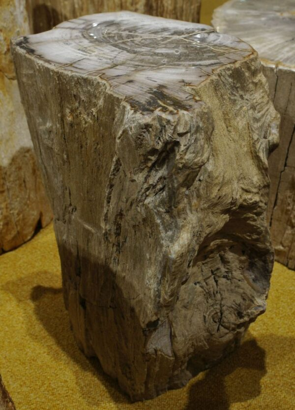 Tavoli laterali legno pietrificato 15122