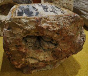 Tavoli laterali legno pietrificato 16114