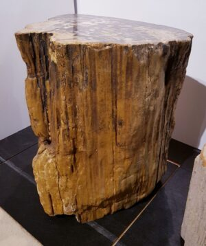 Tavoli laterali legno pietrificato 1675