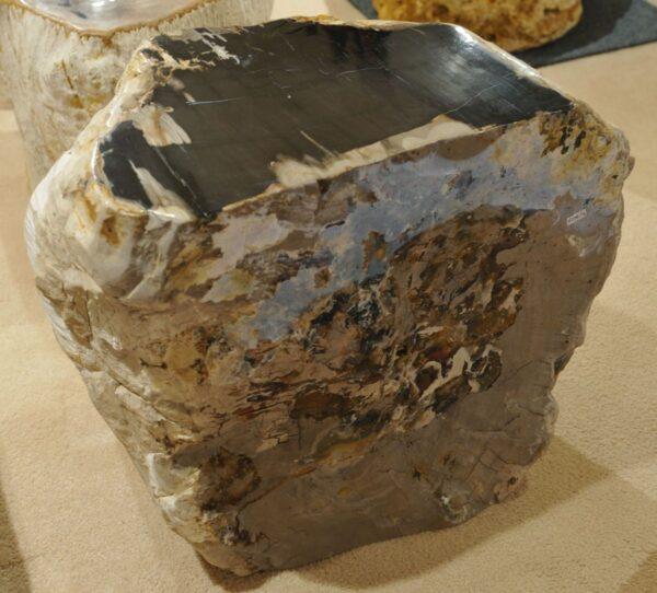 Tavoli laterali legno pietrificato 17281