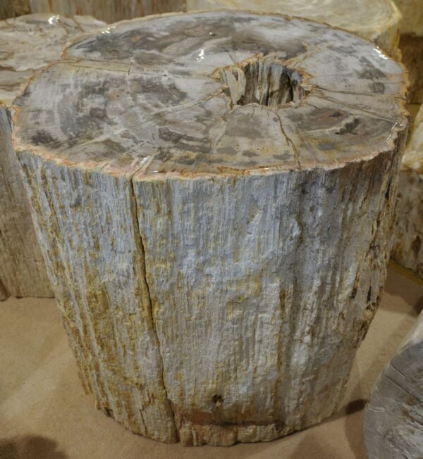 Tavoli laterali legno pietrificato 17289