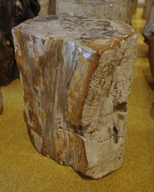 Tavoli laterali legno pietrificato 18381