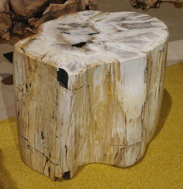 Tavoli laterali legno pietrificato 18382