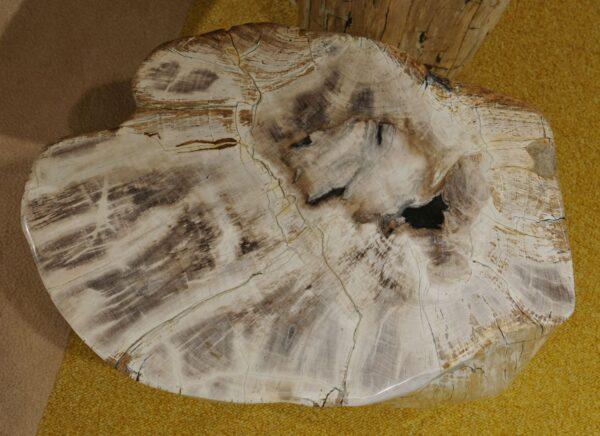 Tavoli laterali legno pietrificato 18383