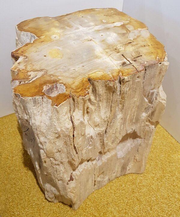 Tavoli laterali legno pietrificato 20361