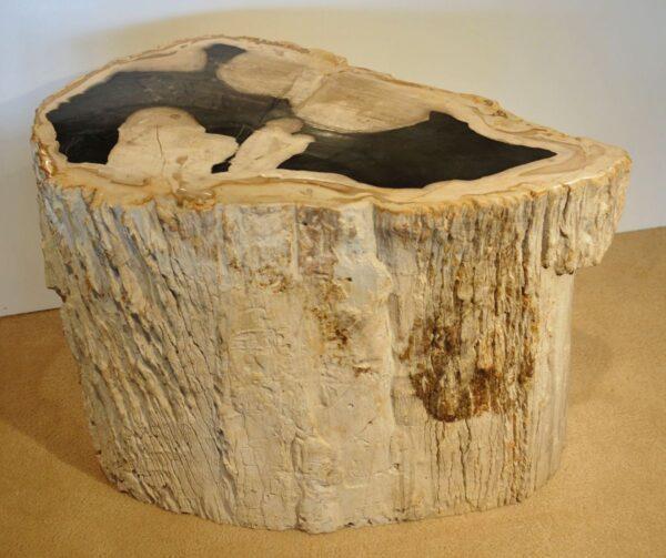 Tavoli laterali legno pietrificato 20375