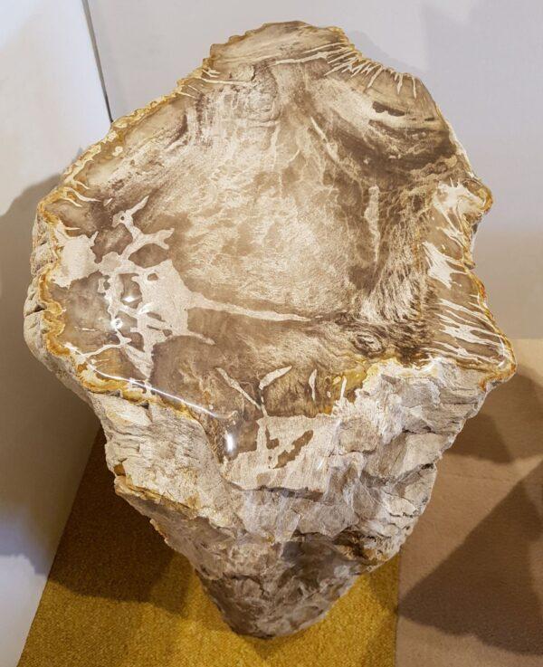 Tavoli laterali legno pietrificato 20379