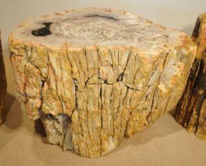 Tavoli laterali legno pietrificato 20402