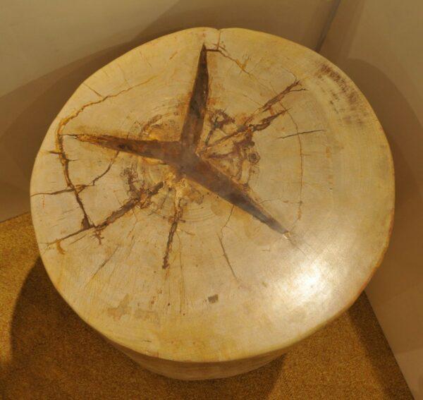 Tavoli laterali legno pietrificato 21340