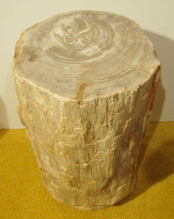 Tavoli laterali legno pietrificato 22304
