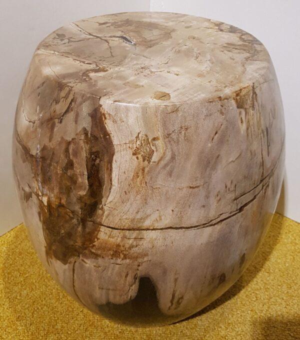 Tavoli laterali legno pietrificato 23011