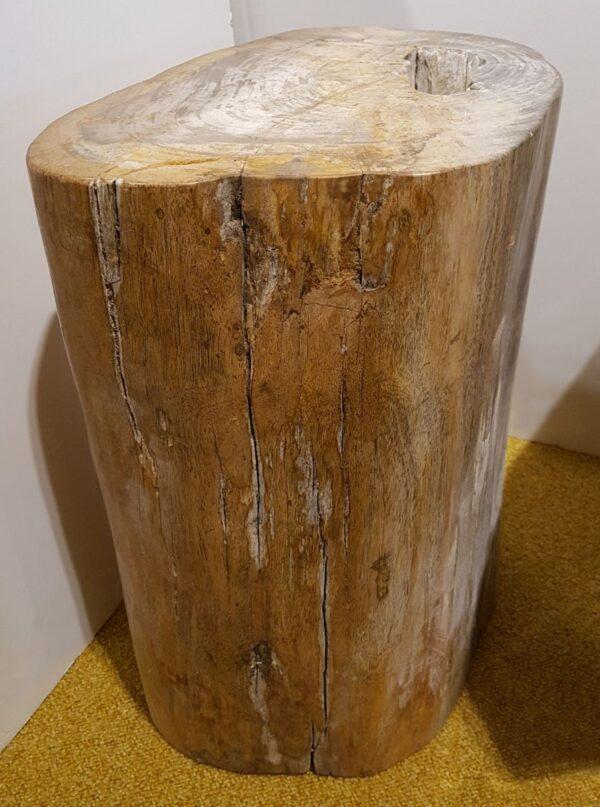 Tavoli laterali legno pietrificato 24000