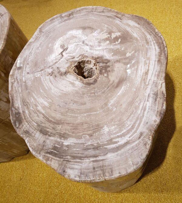 Tavoli laterali legno pietrificato 24001