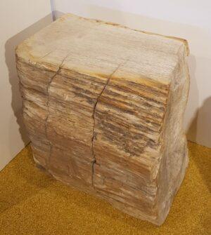 Tavoli laterali legno pietrificato 24012
