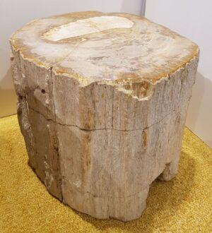 Tavoli laterali legno pietrificato 24065