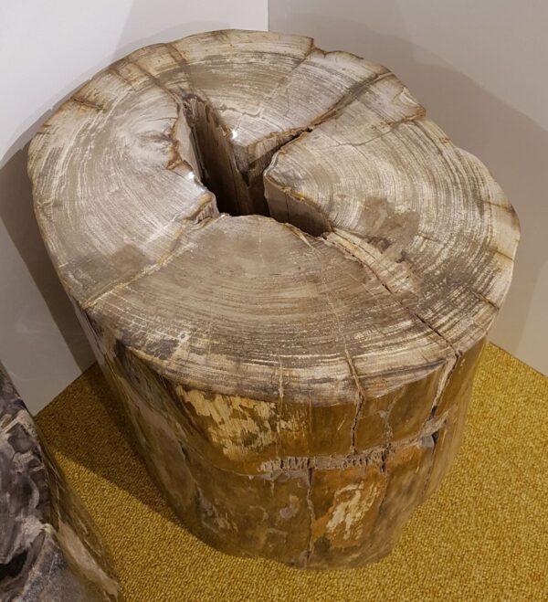 Tavoli laterali legno pietrificato 25006