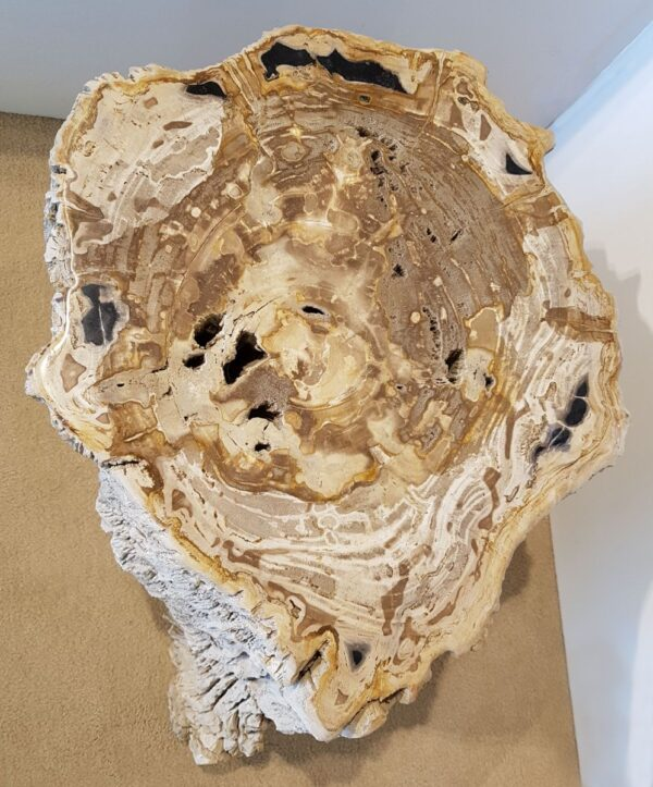 Tavoli laterali legno pietrificato 25008