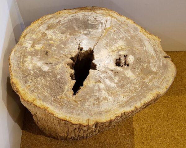 Tavoli laterali legno pietrificato 25019