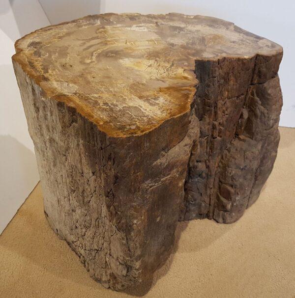 Tavoli laterali legno pietrificato 25027