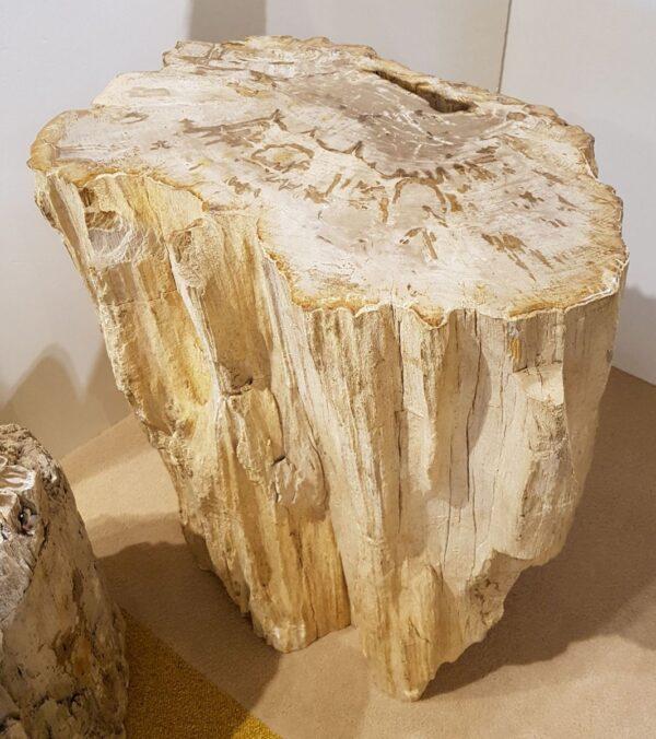 Tavoli laterali legno pietrificato 25358