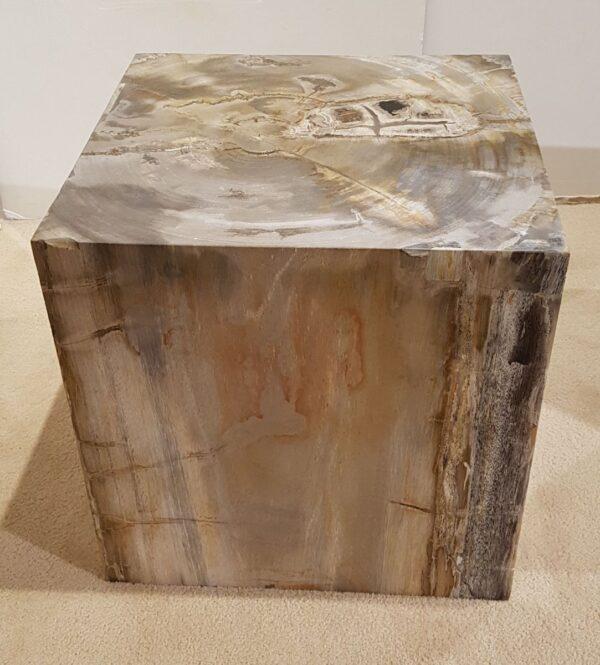 Tavoli laterali legno pietrificato 26363