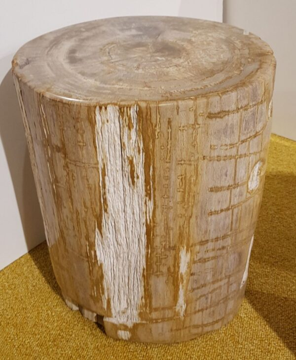 Tavoli laterali legno pietrificato 27505