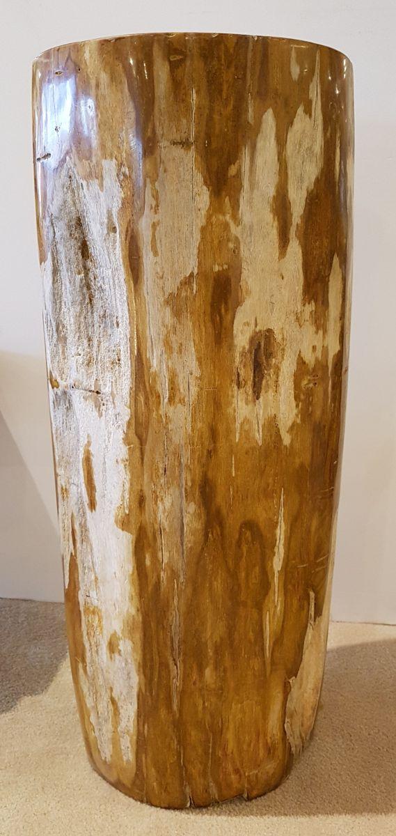Tavoli laterali legno pietrificato 27506
