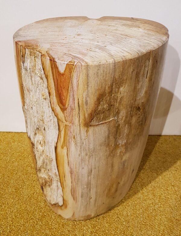 Tavoli laterali legno pietrificato 27534