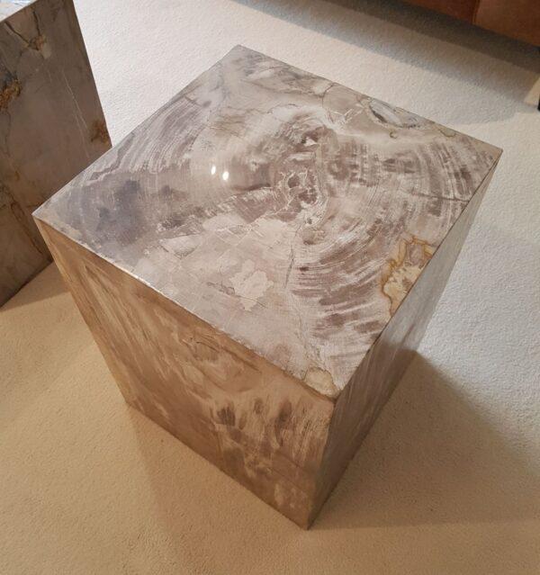 Tavoli laterali legno pietrificato 28010