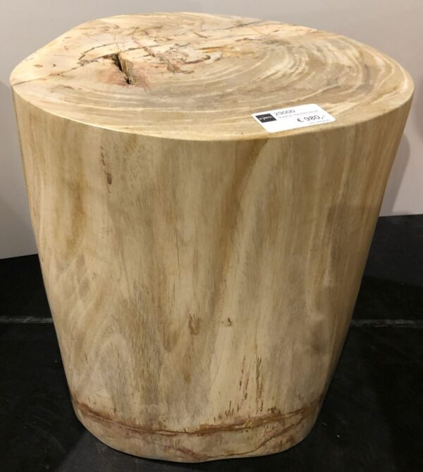 Side table petrified wood 29000