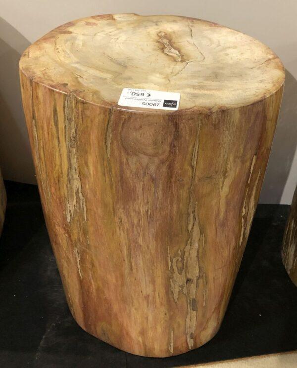 Tavoli laterali legno pietrificato 29005