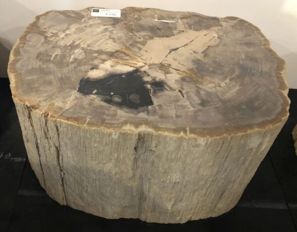 Tavoli laterali legno pietrificato 29010