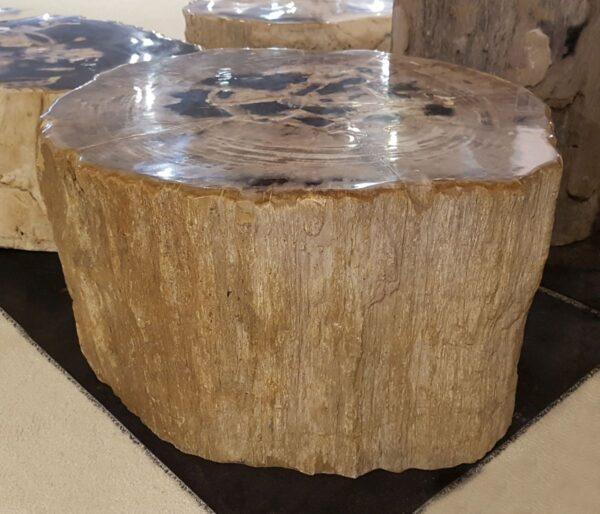 Tavoli laterali legno pietrificato 29012