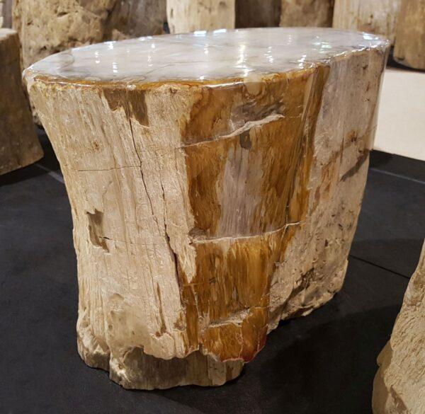 Tavoli laterali legno pietrificato 29016