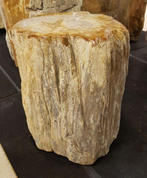 Tavoli laterali legno pietrificato 29018