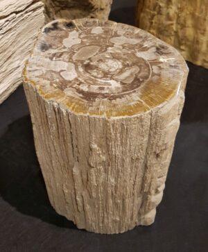 Tavoli laterali legno pietrificato 29024