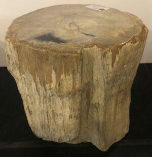 Tavoli laterali legno pietrificato 30019
