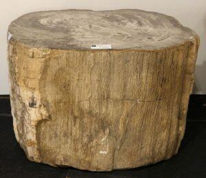 Tavoli laterali legno pietrificato 30023