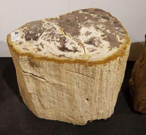 Tavoli laterali legno pietrificato 30028