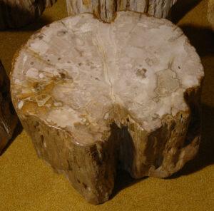 Tavoli laterali legno pietrificato 81228