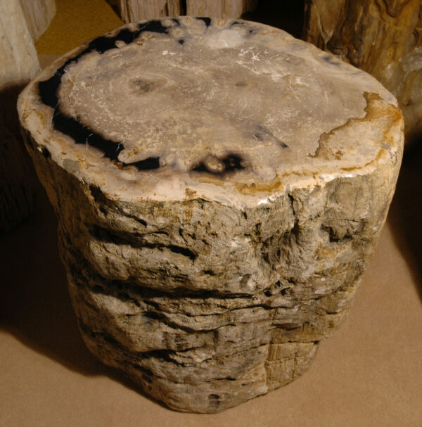 Tavoli laterali legno pietrificato 81251