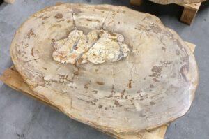 Tavolino legno pietrificato 30257