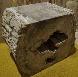 Bijzettafel versteend hout 13260