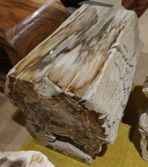Bijzettafel versteend hout 15078