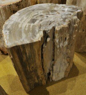 Bijzettafel versteend hout 15118