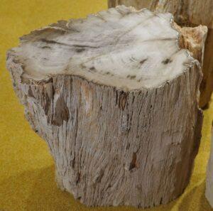 Bijzettafel versteend hout 15119