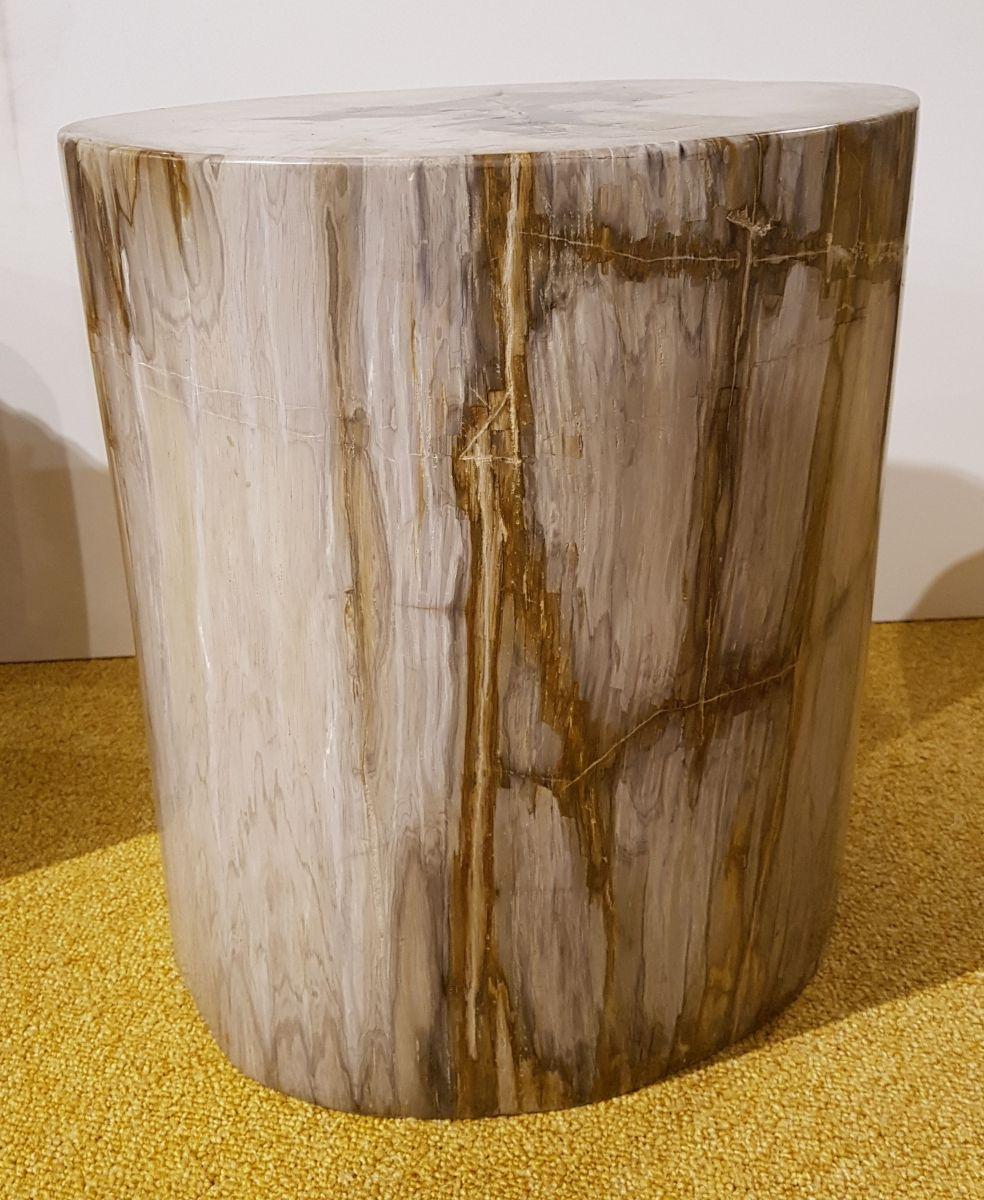 Bijzettafel versteend hout 27528