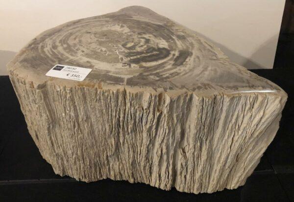 Bijzettafel versteend hout 28030