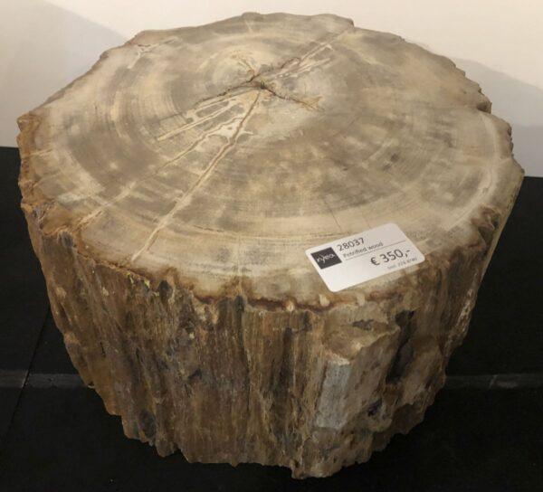 Bijzettafel versteend hout 28037
